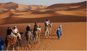 camel_trekking
